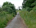 Gaddesby Lane near Rearsby - geograph.org.uk - 855432.jpg