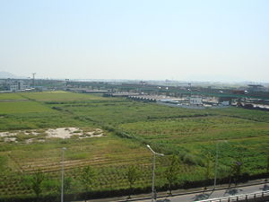 Gangseo District, Busan - Farmland