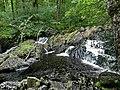 Ganllwyd NNR - panoramio (13).jpg