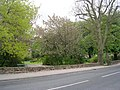 Gardens - Pool Road - geograph.org.uk - 1289897.jpg