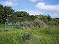Gate on Shotover Plain - geograph.org.uk - 574346.jpg