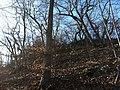 Geissfluh, Olten - panoramio (1).jpg
