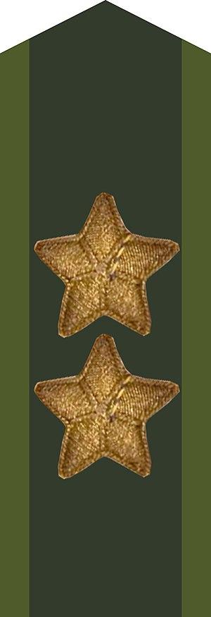 Military ranks of the Swedish Armed Forces - Image: Generallöjtnant kragspegel m 58 stjärna m 39