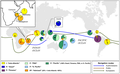 Geographical distributions of Indo-Atlantic and Pacific coconut subpopulations.png