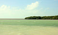 Gfp-florida-keys-marathon-key-aquamoraine-waters.jpg