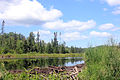 Gfp-minnesota-voyaguers-national-park-small-pond.jpg