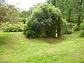 Giardino di Ninfa 121.jpg