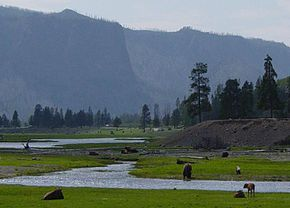 Gibbon River at Madison in Yellowstone-750px.JPG