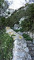 Gibraltar - Mediterranean Steps (02JAN18) (27).jpg
