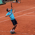 Gilles Simon Serve (2).jpg