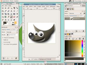 Graphic art software - A screenshot of the GIMP 2.2.8 raster graphic software.