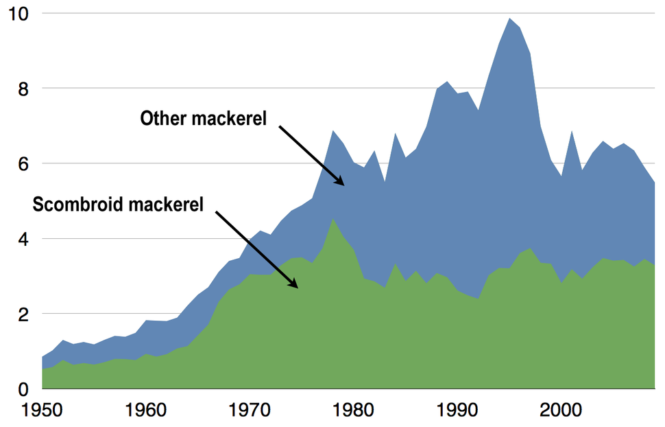 Global capture of all mackerel 1950%E2%80%932009
