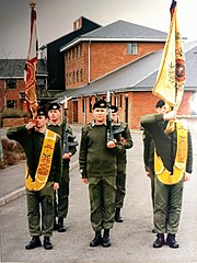 Glosters colours