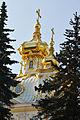 Golden spires of Peterhof, St. Petersburg.jpg
