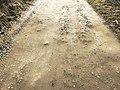 Gravel road with gravel beaten into dirt.jpg