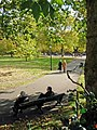 Green Park - geograph.org.uk - 1010488.jpg