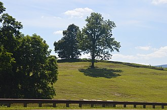Greenfield (Fincastle, Virginia) - Overview from the east