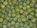 Greengages 0.jpg