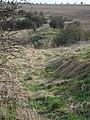 Grims Ditch - panoramio.jpg