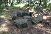 Großsteingrab Bollbrücke von Süden.JPG