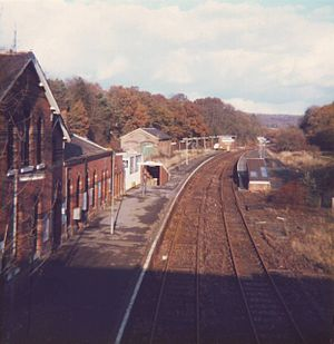 Groombridge railway station - State of the station shortly after closure.