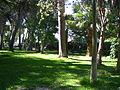 Guadalema de los Quintero (Sevilla), Parque (3).JPG