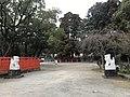 Guardian lions in Kashii Shrine 2.jpg