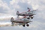 Guinot Wing walkers 7 (3626301116).jpg