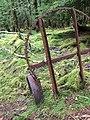 Gwaii Haanas National Park (26944837054).jpg