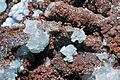 Hémimorphite, wulfénite 300-3-0125.JPG