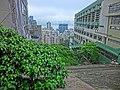 HK 北角半山 North Point Mid-Levels 雲景道 81 Cloud View Road view trees n Victoria Harbour Apr-2014 Man Kiu College.JPG