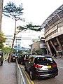 HK 香港南區 Southern District 鋼綫灣 Telegraph Bay 數碼港 Cyberport Jan 2019 SSG 70.jpg