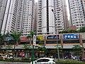 HK TKO 將軍澳 Tseung Kwan O 唐俊街 Tong Chun Street sidewalk shops May 2019 SSG 09.jpg