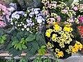 HK Wan Chai Johnston Road April 2021 SS2 flower shop yellow flowers.jpg
