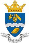 Huy hiệu của Boldva