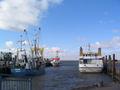 Hafenstrucklahnungshoern.jpg