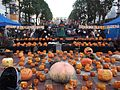 Halloween in Tama Center 2011.jpg