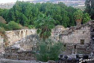 http://upload.wikimedia.org/wikipedia/commons/thumb/b/bc/Hamat-Gader_Ruins.jpg/300px-Hamat-Gader_Ruins.jpg