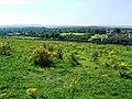 Hanham Green - geograph.org.uk - 534111.jpg