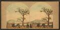 Harper's Ferry opposite, from Robert N. Dennis collection of stereoscopic views.png