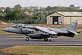 Harrier (5089433827).jpg