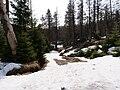 Harz near Bodebruch 04.jpg