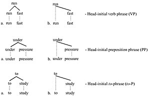 Head (linguistics) - Head-initial trees
