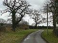 Heatley Lane - geograph.org.uk - 1136616.jpg