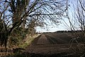 Herringbone field - geograph.org.uk - 368830.jpg