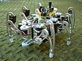 Hexapod walking robot.jpg