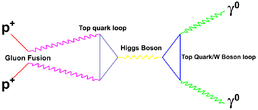 HiggsDigamma.png