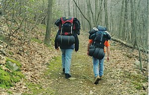 Camping - Backpackers carrying camping equipment