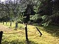 Historic Dyea Townsite (8d2f0424-e3e1-47c6-b49c-052f00cee0ed).jpg
