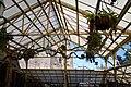 Hogwarts Greenhouse.jpg